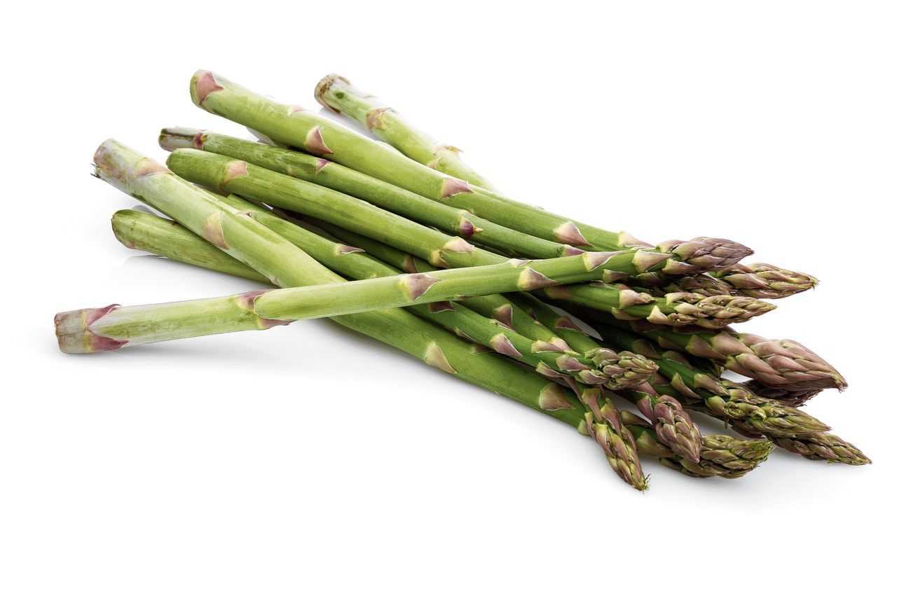 Green asparagus sticks isolated on white background. Studio shot.