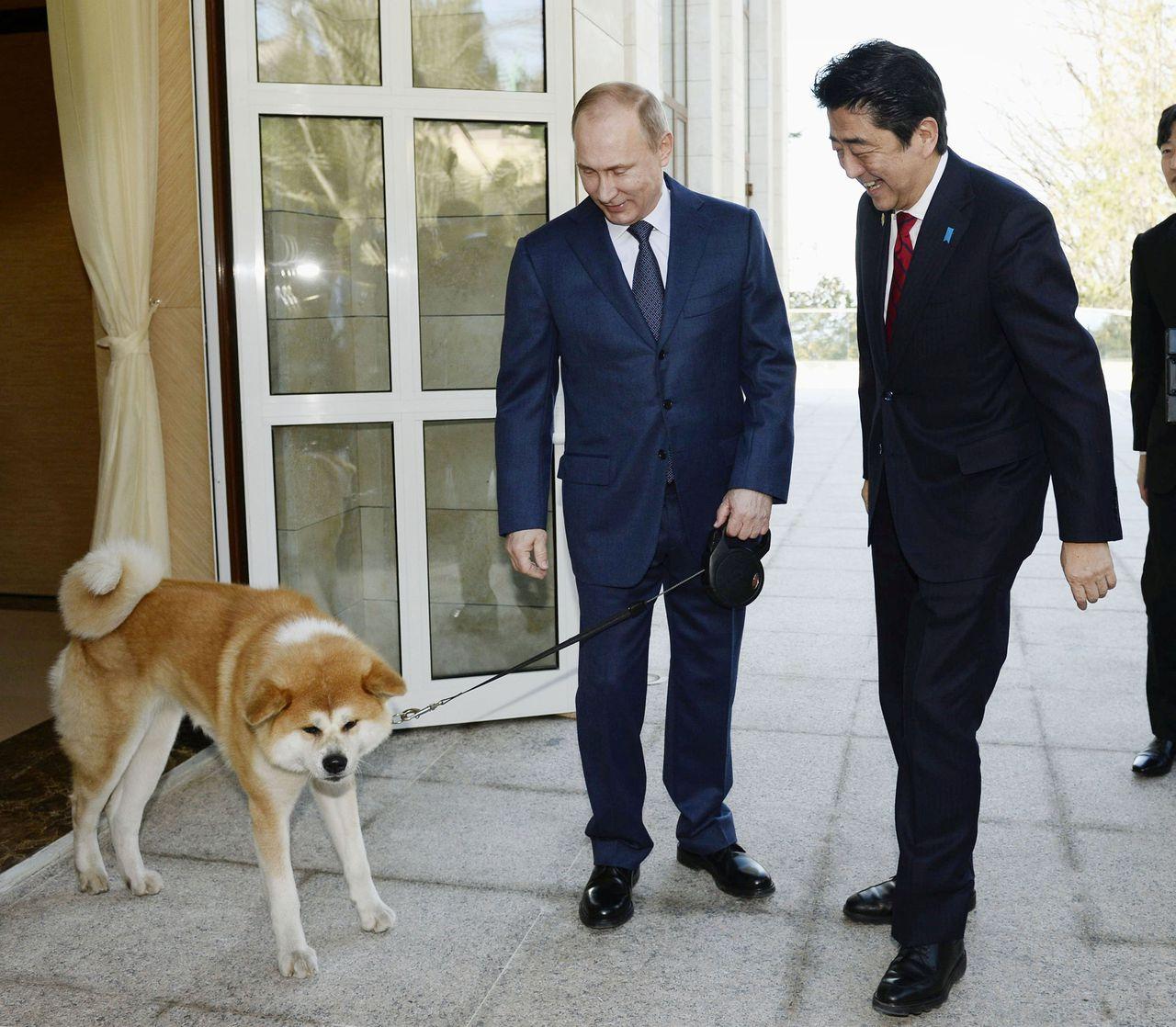 De Russische president kreeg in 2012 al een hond van de Japanse regering.