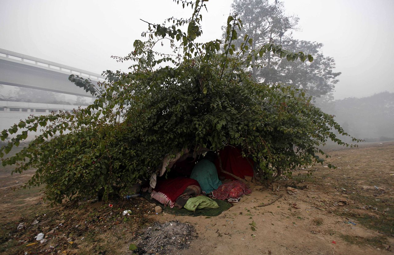 In this photo taken Thursday, Jan. 13, 2011, homeless people sleep under a bush outside a night shelter on the banks of the River Yamuna in New Delhi, India. Police said on Thursday near-freezing temperatures and Himalayan winds killed at least 13 homeless people in northern India, raising the death toll from a severe cold spell to 129. In New Delhi, at least 10 homeless people have died from cold weather over the past two weeks despite a drive by police and welfare officials to persuade people living on the streets to sleep in 80 city-run shelters. (AP Photo/Mustafa Quraishi)