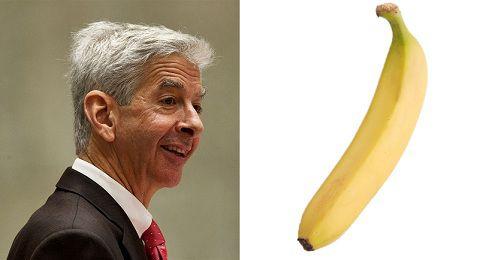 Ronald Plasterk, en een banaan. Foto (links) ANP, Stock.xchng
