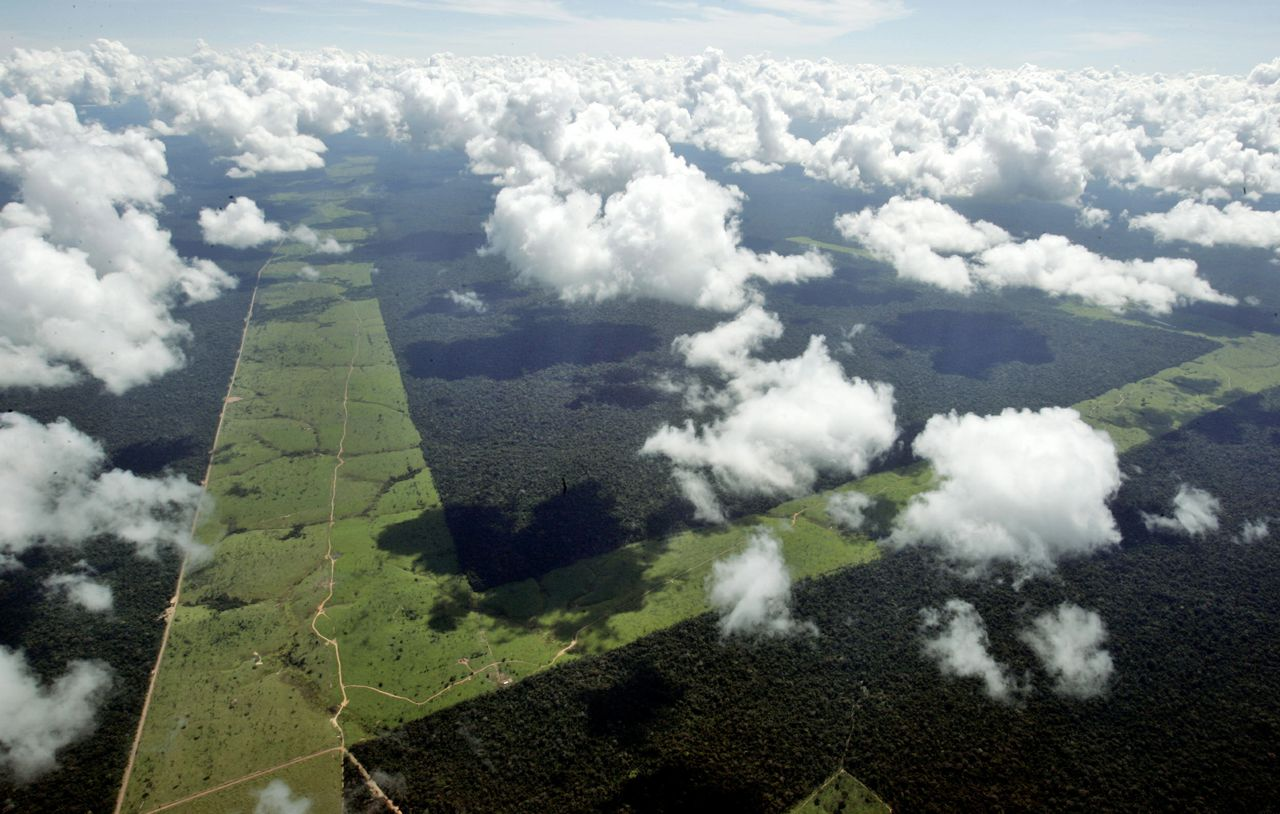 Stroken landbouwgebied in de Amazone. Braziliaans onderzoek stelt dat de kap niet de basis is van het landbouwsucces. (Foto Reuters) -PHOTO TAKEN 18MAY05- Strips of former Amazon jungle destroyed by loggers lie abandoned amidst virgin rainforest in Mato Grosso State, one of the Brazilian states of greatest deforestation, May 18, 2005, the day the Environment Ministry announced that land clearing had increased in 2004. One year after [President Luiz Inacio Lula da Silva] announced a plan of action against the destruction of the Amazon jungle, environmentalists say he has done more to promote dams, roads and farming than halt destruction of the world's largest rainforest, home to up to 30 percent of the world's plant and animal species.