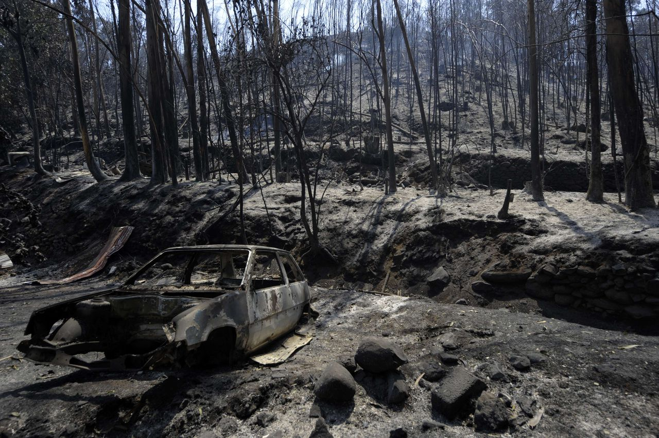 A burnt car sits in a charred forest after a fire in Camacha, some 20 km from Funchal, on Madeira Island, on July 20, 2012. Fires raged around the towns of Calheta, Ribeira Brava as well as in Santa Cruz, where one house was destroyed and a health centre, school and youth centre were evacuated as a precautionary measure. The problems started on July 18 evening when high temperatures and strong winds fanned a fire that broke out on the edge of the capital Funchal, gutting two houses and partially burning a third. AFP PHOTO / MIGUEL RIOPA