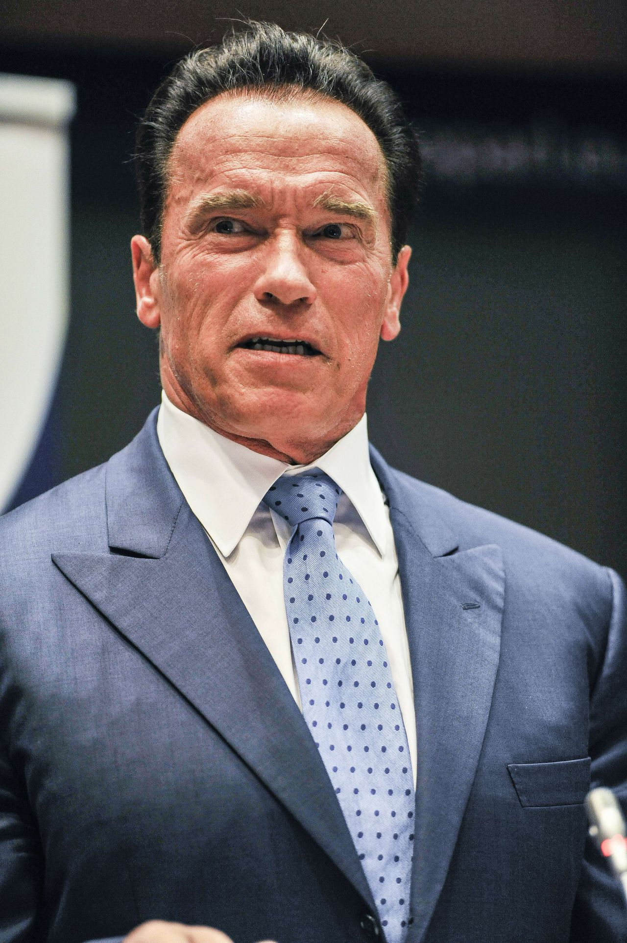 Former Governor of California and founding chair of the R20 initiative - Regions of Climate Action, Arnold Schwarzenegger gives a speech during the yearly ceremony of the Covenant of Mayors at the European Parliament in Brussels, on June 24, 2013. The R20 is a coalition of partners led by regional governments that work to promote and implement projects that are designed to produce local economic and environmental benefits in the form of reduced energy consumption and greenhouse gas emissions, strong local economies, improved public health, and new green jobs. AFP PHOTO /BELGA / LAURIE DIEFFEMBACQ