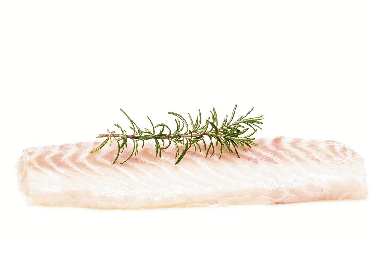 Raw fillet of cod with green rosemary