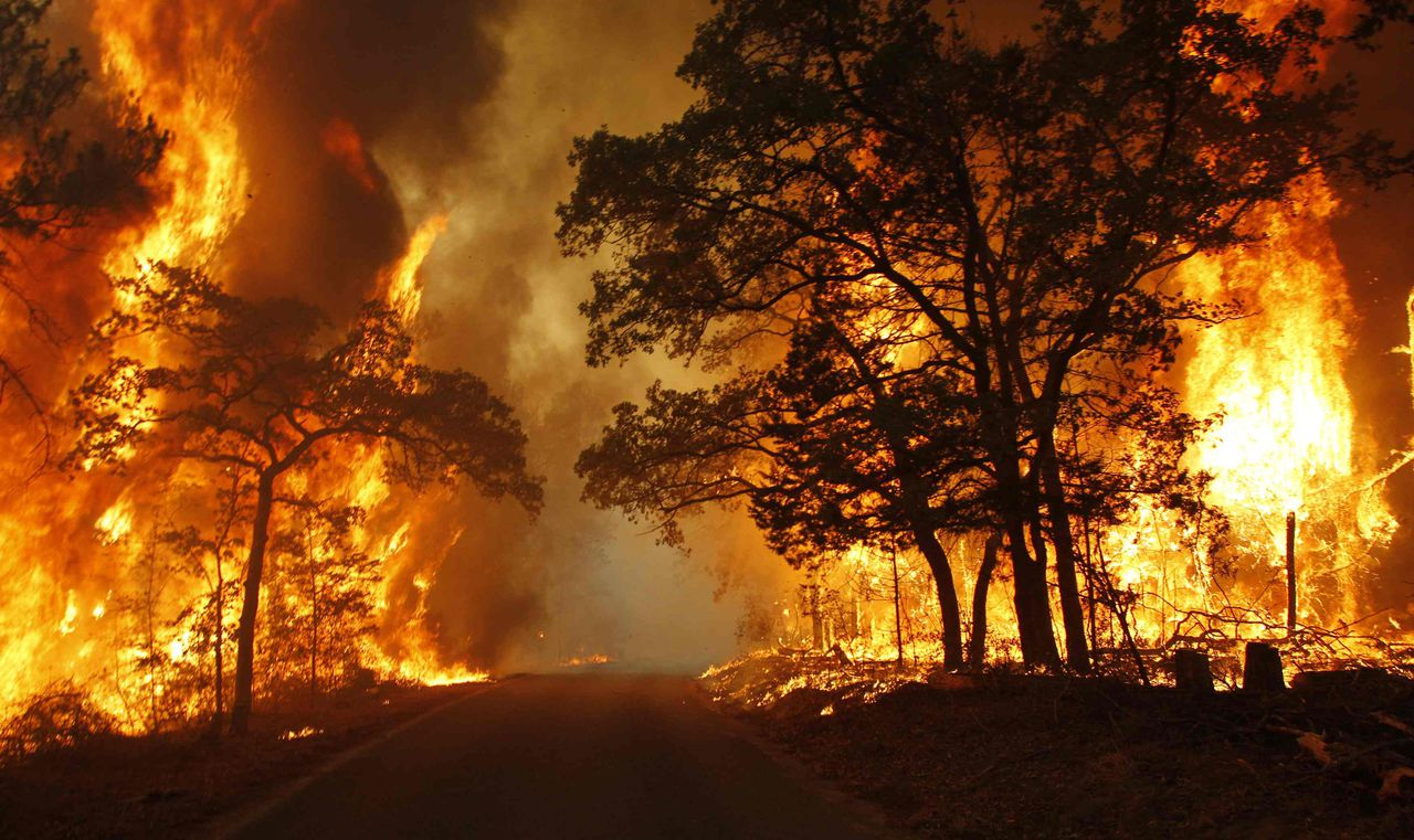 Bij bosbranden in Texas kwamen twee mensen om. 500 huizen vergingen. Gouverneur Perry, een mogelijke uitdager van Obama, ging kijken. Foto Reuters Flames engulf a road near Bastrop State Park as a wildfire burns out of control near Bastrop, Texas September 5, 2011. An estimated 1,000 homes are being threatened in Bastrop County, just east of Austin, as a 14,000-acre (5700-hectare) wildfire rages out of control, causing evacuations. REUTERS/Mike Stone (UNITED STATES - Tags: ENVIRONMENT DISASTER)