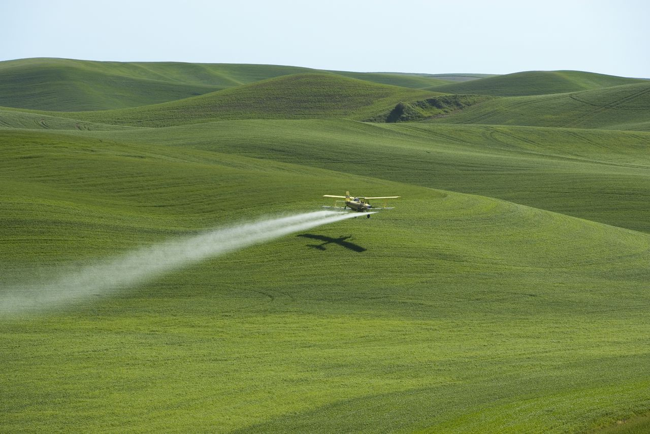Plant health treatment by plane on cereal culture USA. Intensive agriculture on loess hills Palouse Country (Is state of Washington, the North-East of Oregon, Centre-Ouest of Idaho natural Meadow before the arrival of the colonists Biosphoto / J.-L. Klein & M.-L. Hubert
