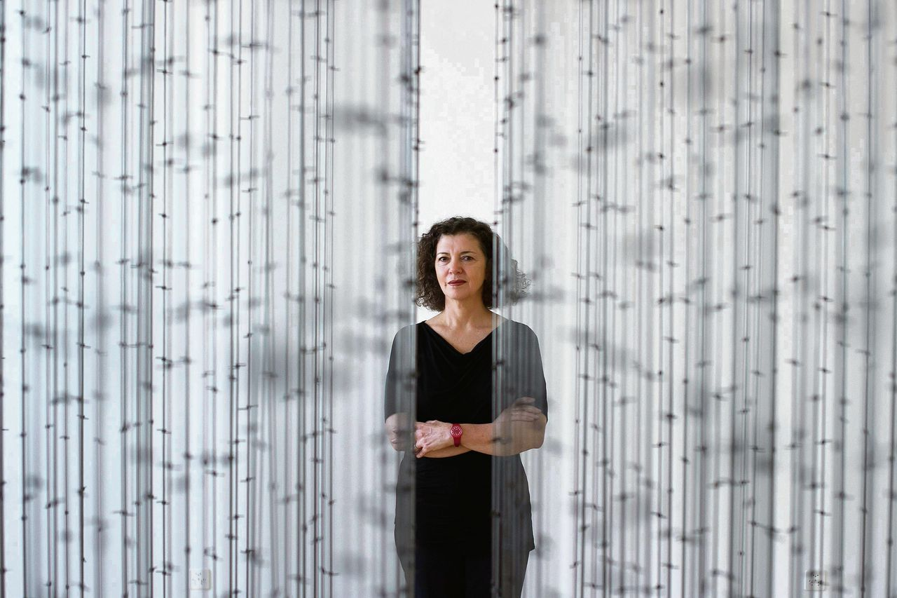 Mona Hatoum in 2013