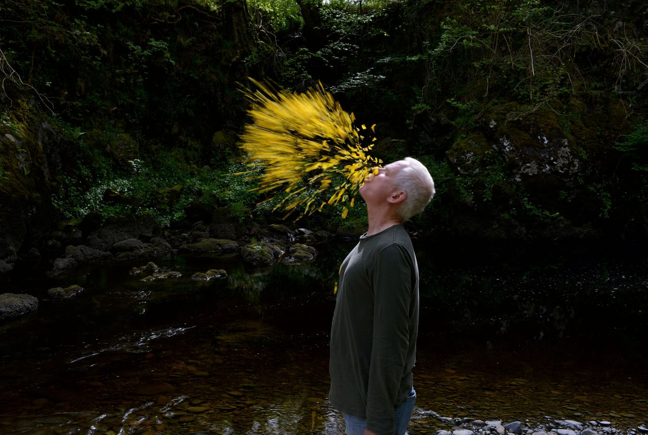 Andy Goldsworthy maakt performancekunst in de natuur.