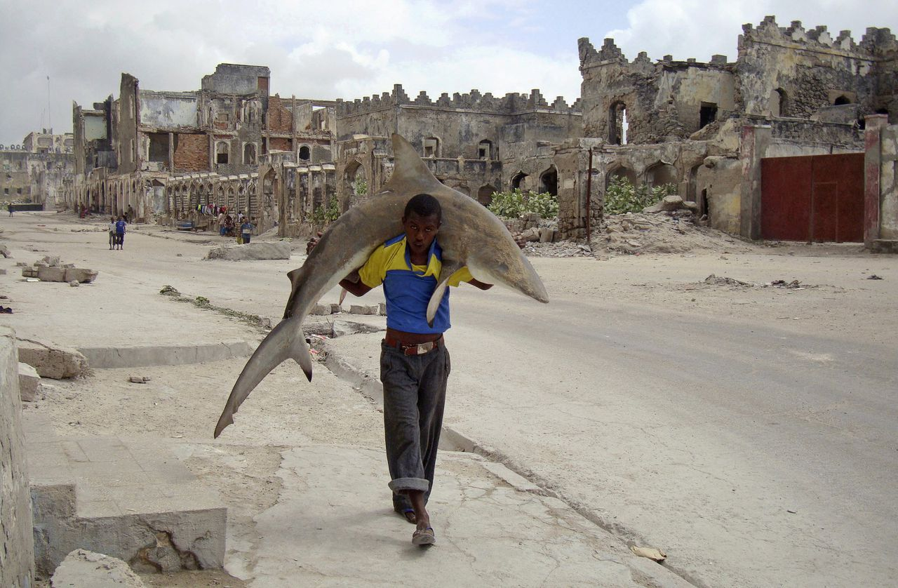 RNPS IMAGES OF THE YEAR 2010 - A man carries a shark through the streets of Mogadishu September 23, 2010. REUTERS/Feisal Omar (SOMALIA - Tags: SOCIETY CITYSCAPE IMAGES OF THE DAY)