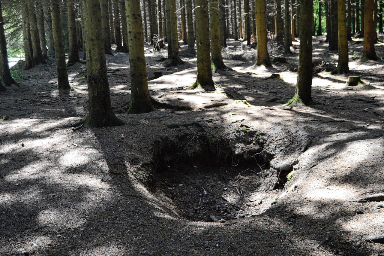 Foxholes in het Bois Jacques bij Foy in Bastogne (Bastenaken).