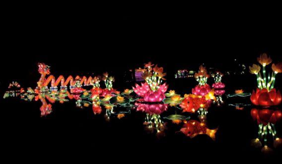 Beeld van China Light Utrecht, het Chinese lichtfestival dat tot begin januari in de Utrechtse Botanische Tuinen te zien is.