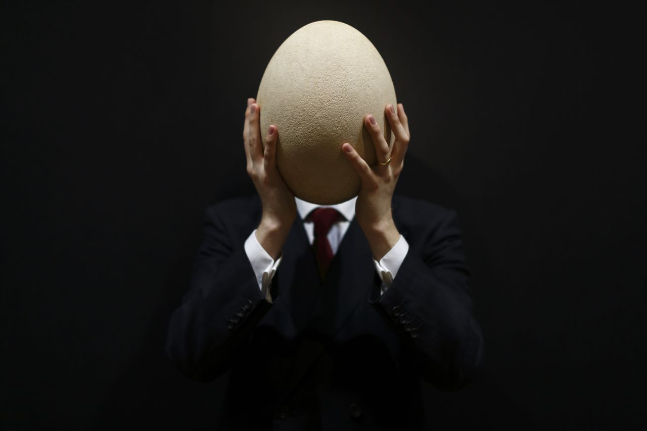 TOPSHOTS An employee of Christie's auction house poses with a complete sub-fossilised Elephant Bird egg in London on March 27, 2013 during a press preview of their April 'Travel, Science and Natural History' sale. This pre-17th century egg of the extinct Elephant Bird, the largest bird ever to have lived, is approximately 100 times larger than the average chicken's egg and is estimated to fetch 20,000 - 30,000 GBP when it goes on sale on April 24, 2013. AFP PHOTO / JUSTIN TALLIS