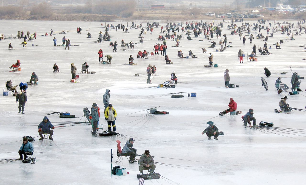 Foto AFP Thousands of South Korean anglers cast lines through holes of the frozen river in Hwacheon, 120 kilometers (72 miles) northeast of Seoul, during a contest to catch salmon trout. The contest is part of an ice festival which has attracted nearly one million visitors. AFP PHOTO