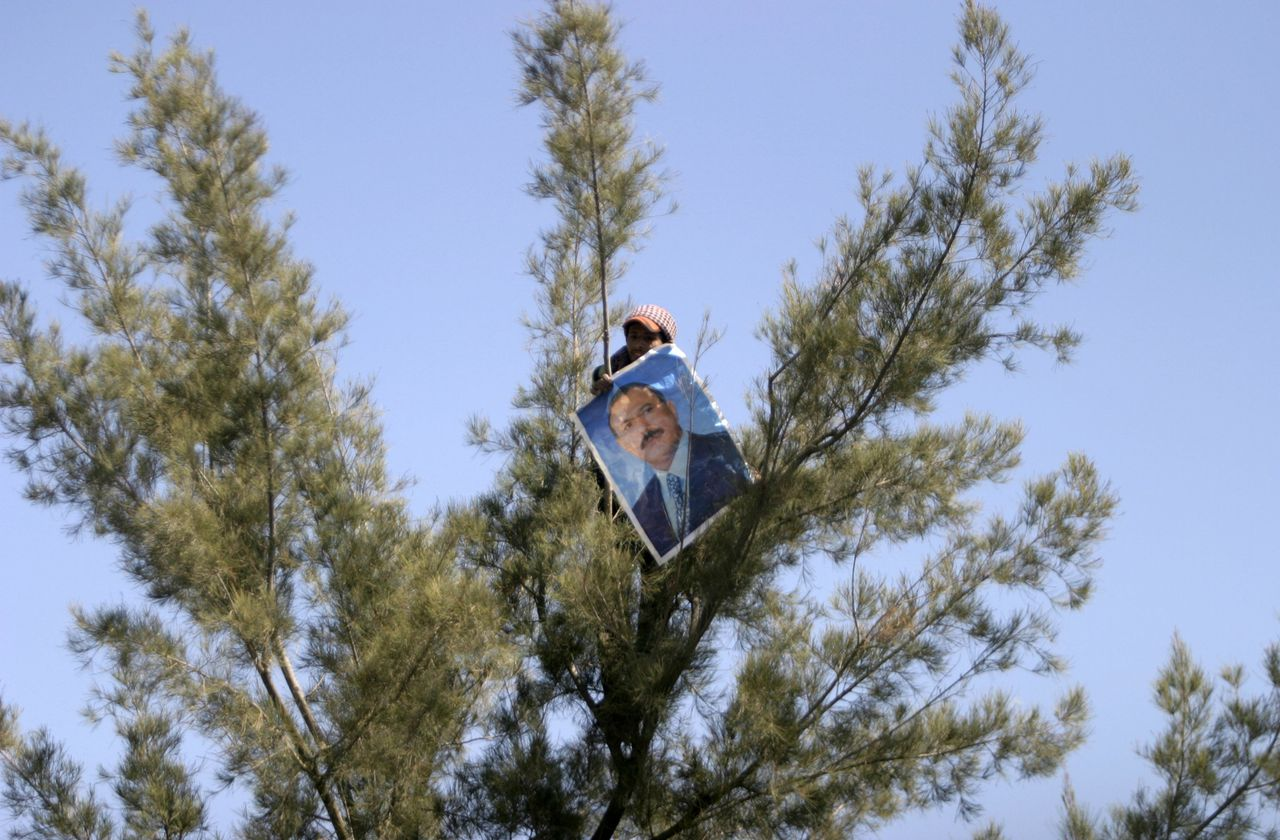 A government supporter holds a poster of Yemeni President Ali Abdullah Saleh in a tree during an anti-government rally outside Sanaa University in Sanaa January 22, 2011. REUTERS/Khaled Abdullah (YEMEN - Tags: POLITICS CIVIL UNREST)