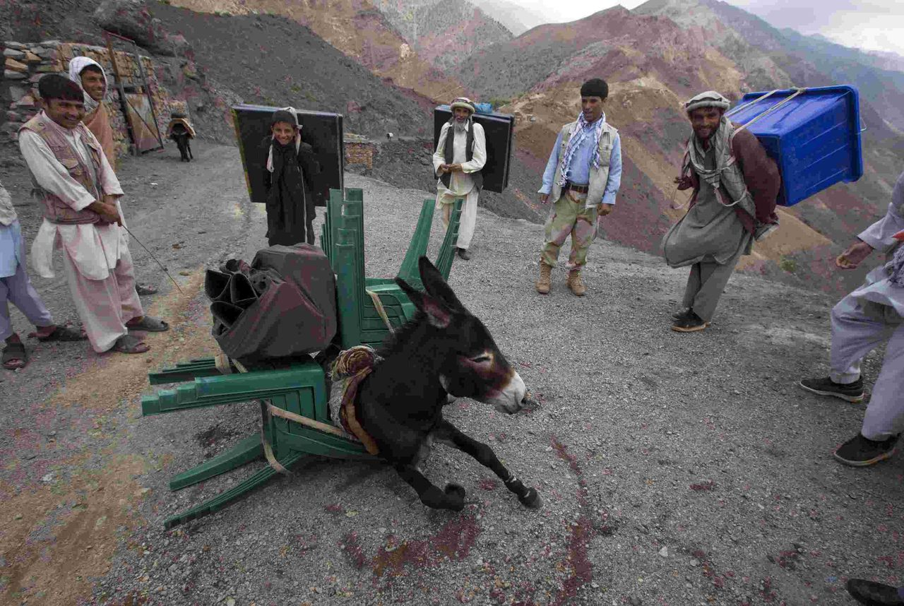 RNPS IMAGES OF THE YEAR 2010 - A donkey collapses after being overloaded with election materials to be transported to a village unreachable by vehicles, in Panjshir province, north of Kabul September 17, 2010. Afghanistan will hold parliamentary elections on September 18. REUTERS/Ahmad Masood (AFGHANISTAN - Tags: ELECTIONS POLITICS IMAGES OF THE DAY)