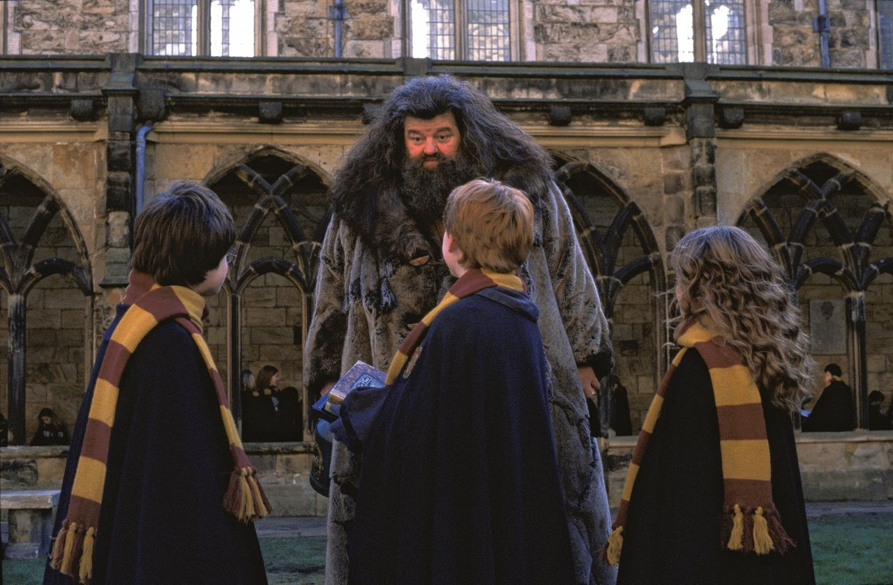 Goedzak Hagrid, hier in Harry Potter and the Chamber of Secrets (2002)