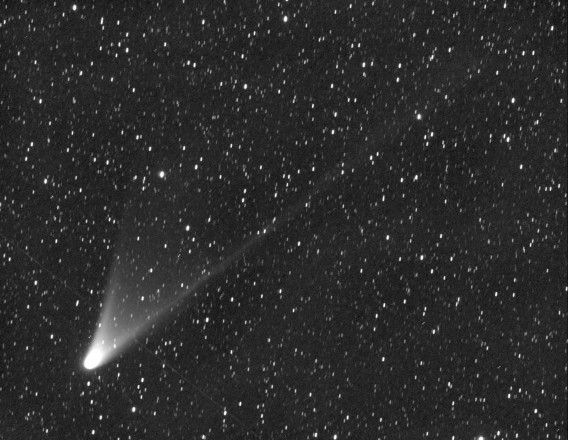 Comet PANSTARRS C/2011 L4, is pictured in this handout photo taken February 8, 2013, in Australia, courtesy of Terry Lovejoy via the University of Hawaii. The first of two comets heading toward the sun this year made its closest approach to Earth on March 5, 2013, and will be visible in the Northern Hemisphere beginning on March 7, 2013. Skywatchers in the Southern Hemisphere have been able to see Comet Pan-STARRS for weeks at twilight, even without binoculars or a telescope. The comet came about 100 million miles (161 million km) from Earth on Tuesday. REUTERS/University of Hawaii/Terry Lovejoy/Australia (OUTER SPACE - Tags: ENVIRONMENT) NO SALES. NO ARCHIVES. FOR EDITORIAL USE ONLY. NOT FOR SALE FOR MARKETING OR ADVERTISING CAMPAIGNS. THIS IMAGE HAS BEEN SUPPLIED BY A THIRD PARTY. IT IS DISTRIBUTED, EXACTLY AS RECEIVED BY REUTERS, AS A SERVICE TO CLIENTS