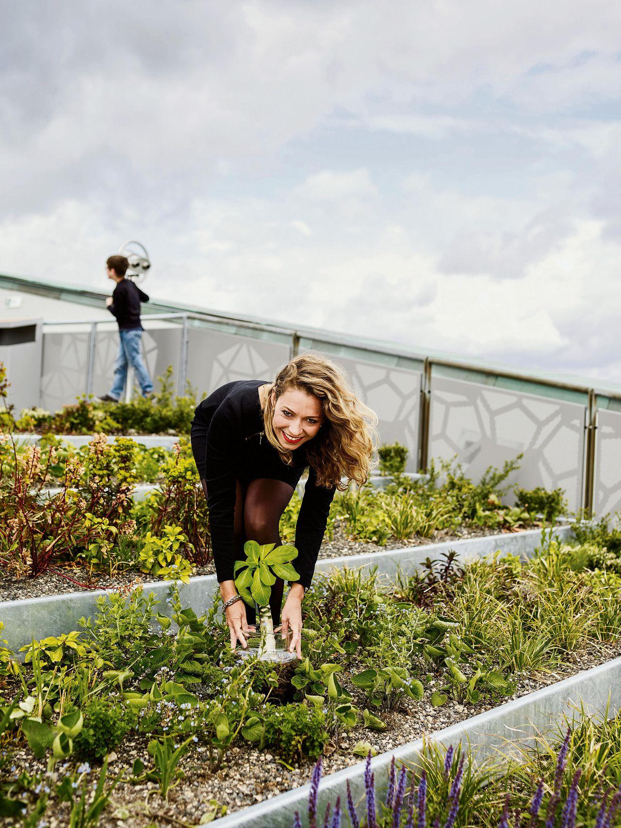 Nederland is wereldleider in bloemen, maar innoveren? ho maar!   nrc