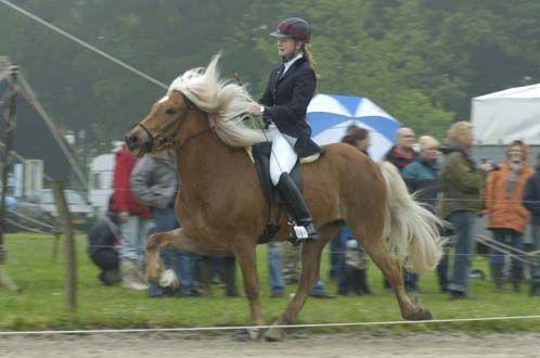 """Winnaar (2) klik@nrc.nl Robin Kerkhoven (15): """"Ik heb vorig jaar juni op het Nederlands Kampioenschap IJslandse Paarden voor de jeugd vier gouden medailles gewonnen en werd verkozen tot Grootste Talent van het jaar. Ik mocht naar Oostenrijk voor de Wereldkampioenschappen en won twee gouden medailles met mijn paard Eyðir."""""""