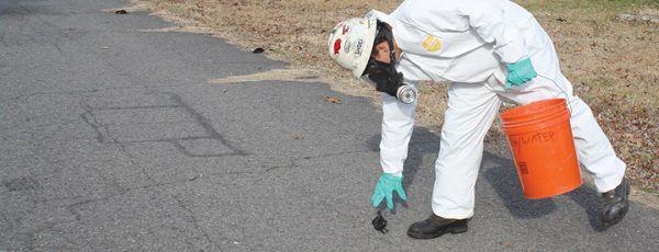 Een werknemer van de milieudienst raapt dode vogels in Beebe, Arkansas.