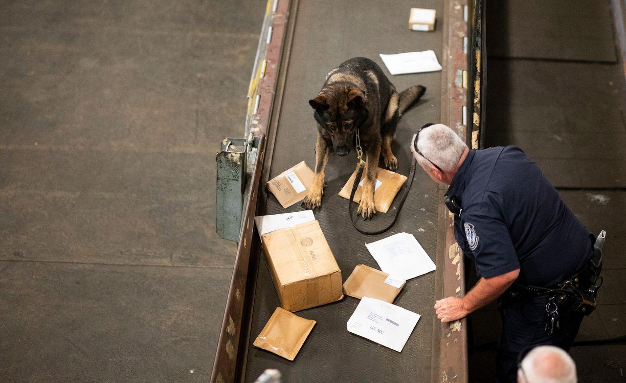 """Buitenlandse collega's melden aan Nederlandse opsporingsambtenaren dat ze """"overspoeld"""" worden met drugspakketten uit Nederland."""