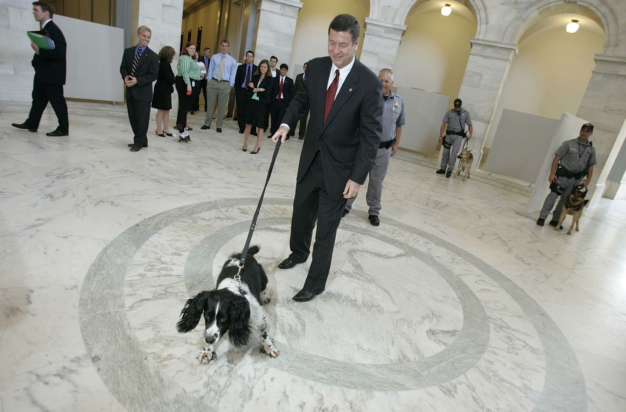 George Allen, oud-gouverneur van Virginia, met explosievenspeurhond Sammy, vorig jaar, in het gebouw van de Amerikaanse Senaat. (Foto AFP) U.S. Sen. George Allen (R-VA) walks U.S. Capitol Police explosives detection dog Sammy, 6, through the rotunda of the Russell Senate Office Building toward a hearing on S. 1110 18 July 2005 in Washington, DC. Allen is one of the sponsors of S.1110, a bill requiring that engine coolant and antifreeze contain a bittering agent in order to render it unpalatable. Currently, engine coolant and antifreeze tastes sweet to animals and children but is toxic even in small quantities. It's estimated that approximately 10,000 animals and 1,400 children a year are harmed by drinking the fluid that has either seeped from vehicle radiators or inadvertently been left on the ground. (Chip Somodevilla/Getty Images/AFP) FOR NEWSPAPERS AND TV USE ONLY