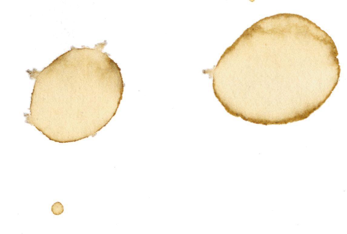 Koffievlekken krijgen tijdens het opdrogen altijd een donkere rand. Twentse fysici filmden het proces om antwoord te krijgen op de waarom-vraag.