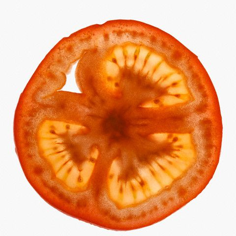 Tomato Slice --- Image by © Imagemore Co., Ltd./Corbis