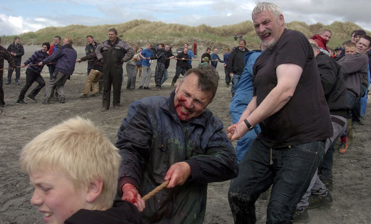 Inhabitants of Faroe Islands catch and slaughter pilot whales (Globicephala melaena) during the traditional 'Grindadrap' (whale hunting in Faroese) near Sandur on Sandoy island June 05, 2012. Residents of the Faroe Islands, an autonomous province of Denmark, slaughter and eat pilot whales every year. The Faroese are descendents of Vikings, and pilot whales have been a central part of their diet for more than 1,000 years. They crowd the animals into a bay and kill them. 'Grindadrap' whaling is not done for commercial purposes, the meat can not be sold and is divided evenly between members of the local community. REUTERS/Andrija Ilic (FAROE ISLANDS - Tags: ANIMALS ENVIRONMENT SOCIETY)