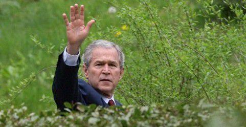 Georg W. Bush in 2008.