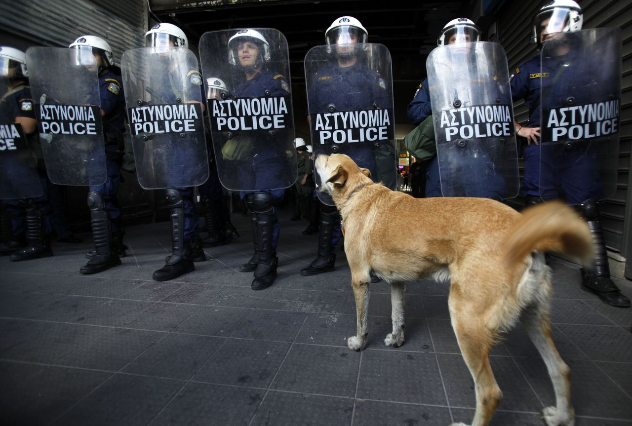A dog barks at riot police during a protest outside the Finance Ministry in Athens, Friday, Oct. 14, 2011. Buses, metro trains, trams and taxis were not running in the Greek capital, snarling traffic as public transport workers walked off the job for a second day in an unrelenting barrage of protests against government austerity measures. (AP Photo/Kostas Tsironis)