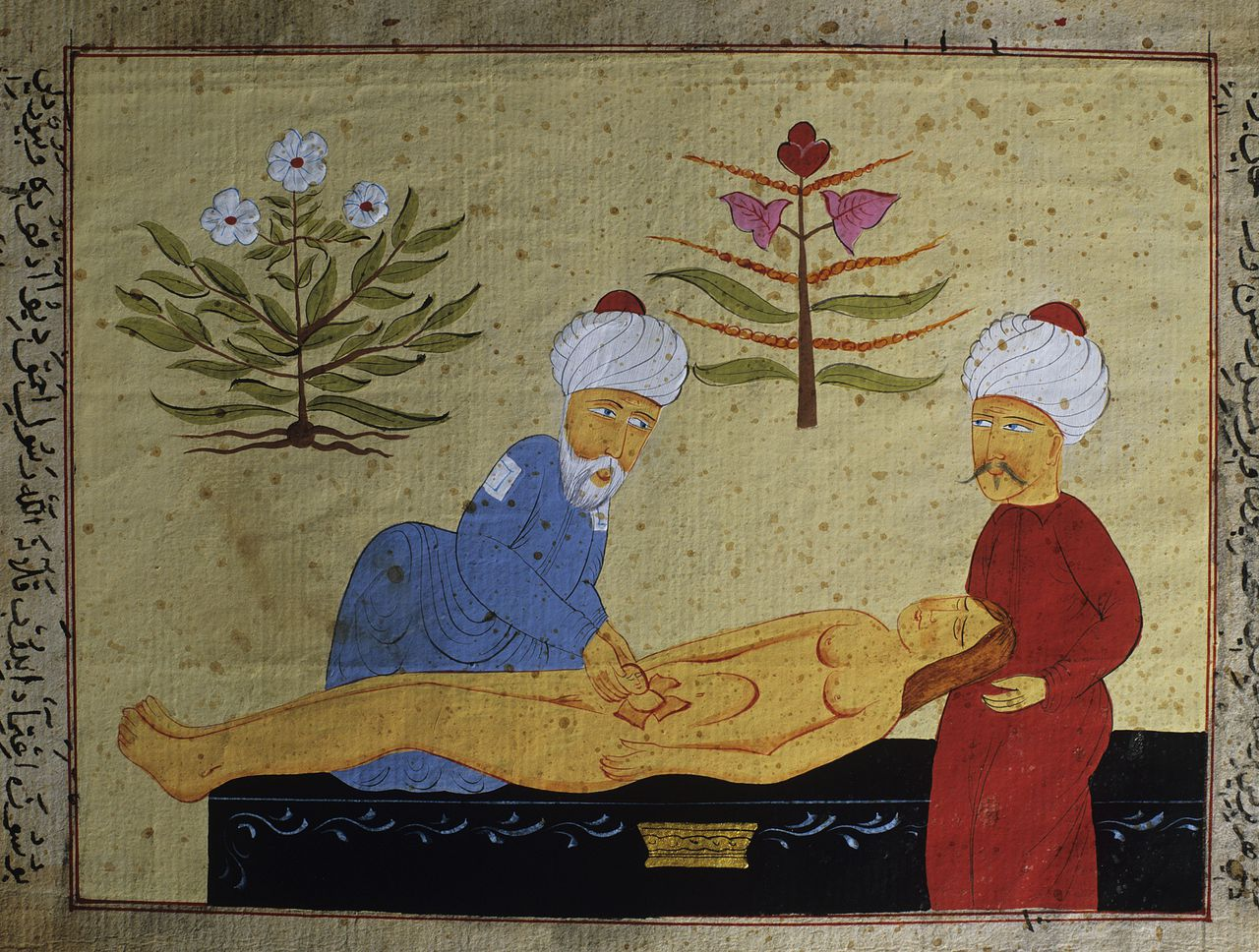 Childbirth by caesarian section, Ottoman manuscript Photo Credit: [ The Art Archive / University Library Istanbul / Gianni Dagli Orti ]