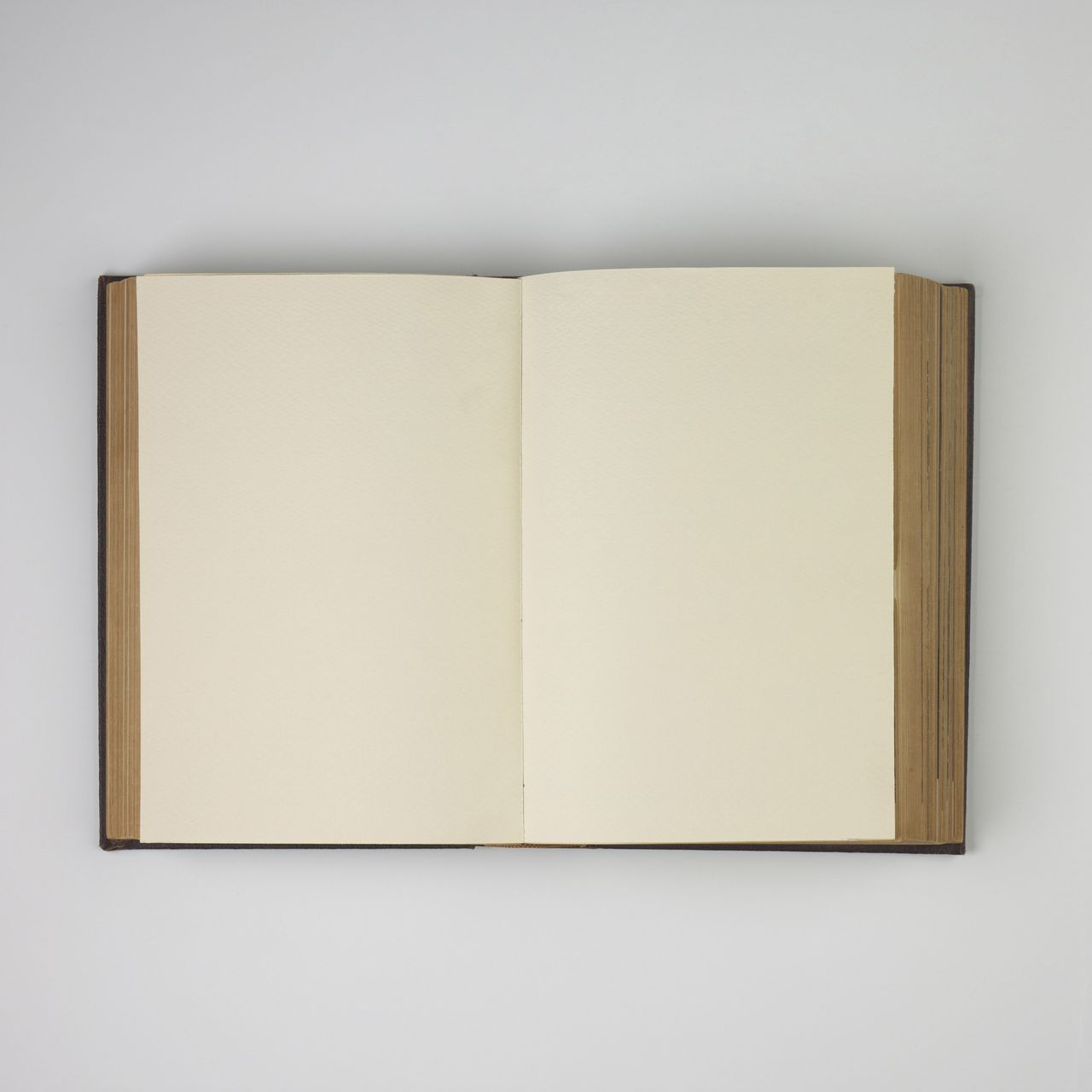 Wide-Open Antique Book with Gold-Rimmed Pages