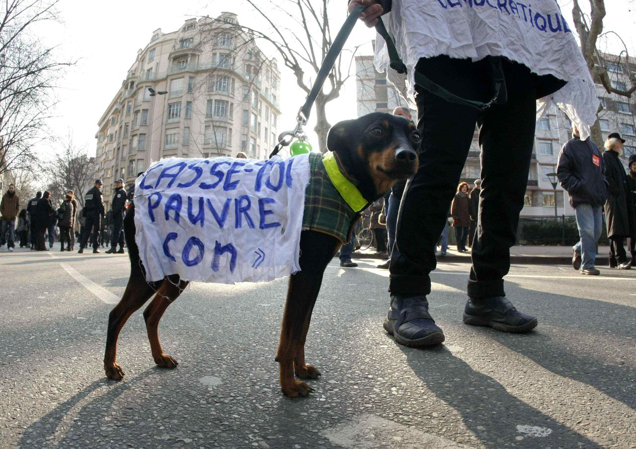 """Honderdduizenden Fransen staakten gisteren. Zelfs de beurs Euronext in Parijs was dicht. Foto Reuters A demonstrator walks a dog which has a piece of cloth draped over it during a demonstration by public and private sector workers in Lyon, southeastern France, January 29, 2009. Hundreds of thousands of teachers, nurses, factory workers and plumbers marched through French cities on Thursday to demand pay rises and protection for jobs. The demonstrations were the high point of a nationwide one-day strike called by France's eight main trade unions to try to persuade President Nicolas Sarkozy and business leaders to do more to help ordinary people overcome the economic crisis. The words on the cloth read, """"Get lost poor idiot"""". REUTERS/Robert Pratta (FRANCE)"""