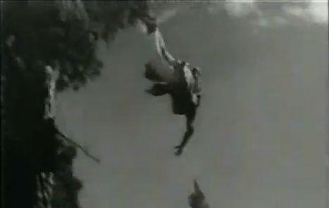 Hal Needham springt uit een boom.