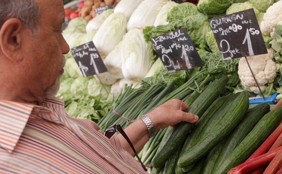 A man selects a cucumber at a vegetable stall at Naschmarkt food market in Vienna May 30, 2011. A virulent form of E.coli bacteria blamed on infected cucumbers from Spain has killed 10 people in Germany and sickened 300, health officials said on Sunday while warning people not to eat suspect vegetables. REUTERS/Herwig Prammer