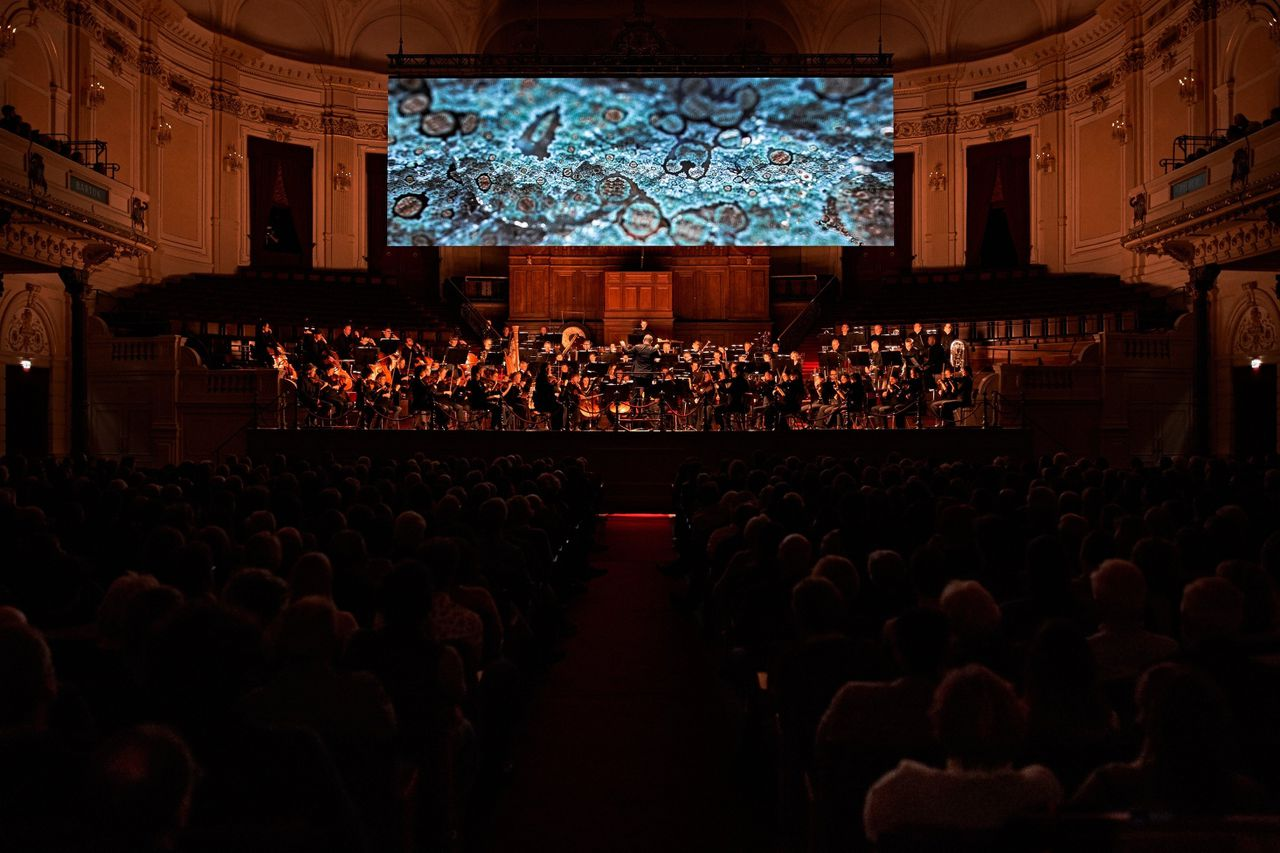 'Symphonic Cinema: The Echo of Being' met het Nederlands Philharmonisch Orkest o. l. v. Antony Hermus.