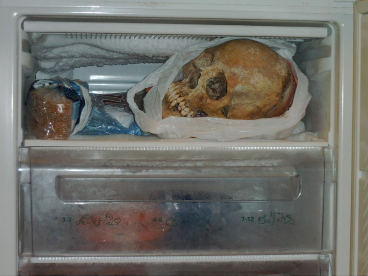 "This is an undated Swedish police handout made available on Tuesday Nov. 20, 2012, showing a human skull in a freezer in the apartment of a 37-year-old woman in Goteborg, southern Sweden. A woman in Sweden has been accused of necrophilia after investigators found some 100 skeleton parts in her apartment. The Swedish news agency TT cites prosecutor Kristina Ehrenborg-Staffas as saying that the 37-year-old woman is suspected of using the remains, which included six skulls and one backbone, in ""sexual situations."" The woman from southwestern Sweden was charged ""with violating the peace of the deceased"" in Goteborg District Court on Tuesday. (AP Photo/Scanpix Sweden/Swedish Police via Scanpix Sweden ) SWEDEN OUT MANDATORY CREDIT"