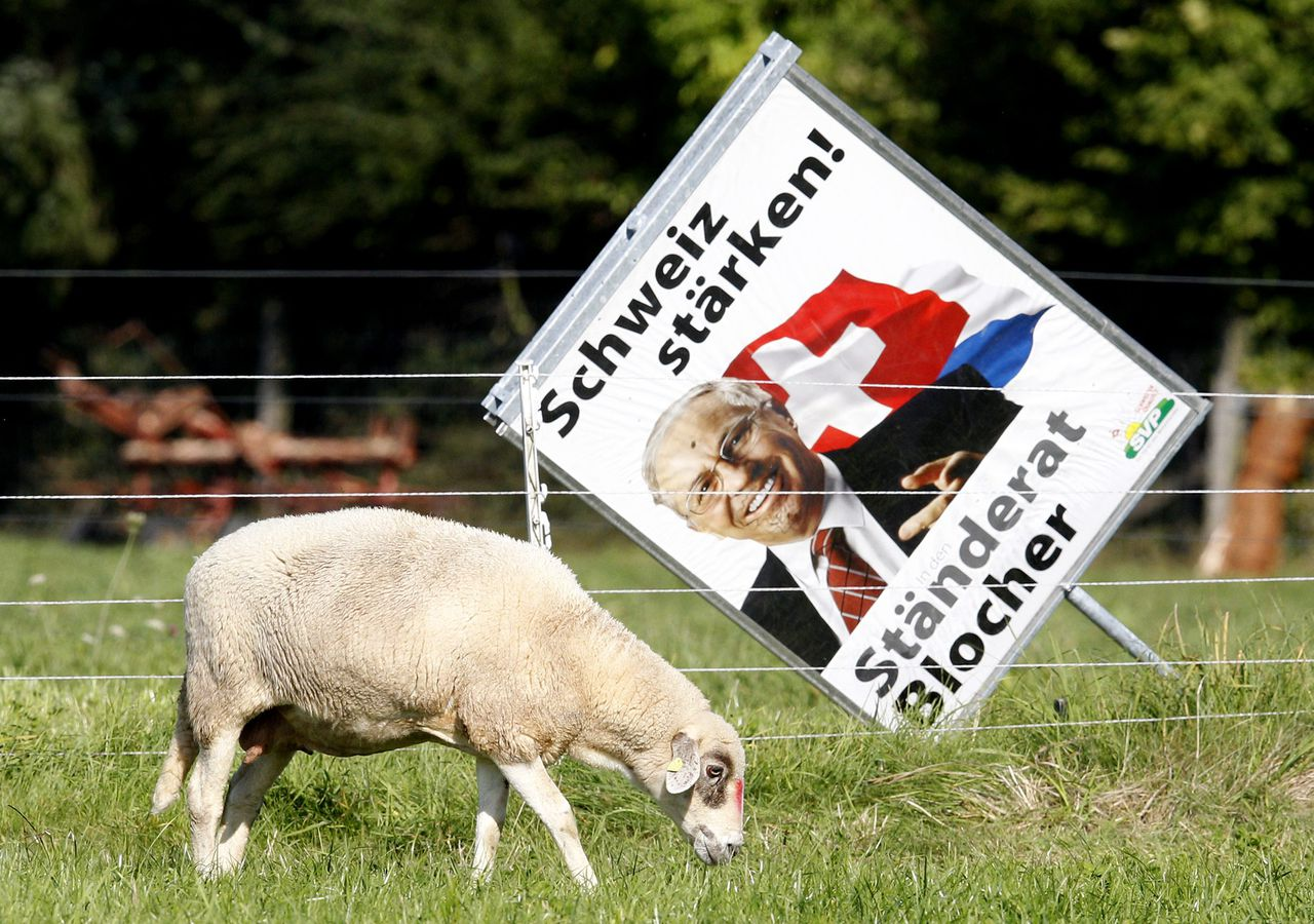 A sheep grazes in front of an election campaign poster showing former Swiss Minister and candidate for the up-coming Swiss national election Christoph Blocher of the Swiss People's Party (SVP), in Kuesnacht, near Zurich, September 26, 2011. Switzerland will elect a new Parliament on October 23, 2011. Picture taken September 26, 2011. REUTERS/Christian Hartmann (SWITZERLAND - Tags: POLITICS ELECTIONS)