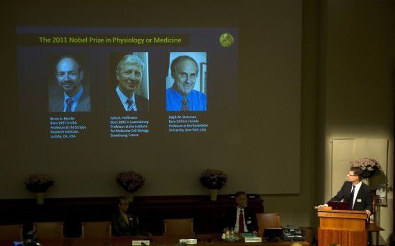 A picture of a television screen at the Nobel Assembly at the Karolinska Institute in Stockholm announces that Bruce A. Beutler of the USA and Jules A. Hoffmann of Luxembourg had won the 2011 Nobel Prize in Physiology or Medicine for their discoveries concerning the activation of innate immunity and that Ralph M. Steinman of Canada had won for his discovery of the dendritic cell and its role in adaptive immunity. AFP PHOTO/JONATHAN NACKSTRAND