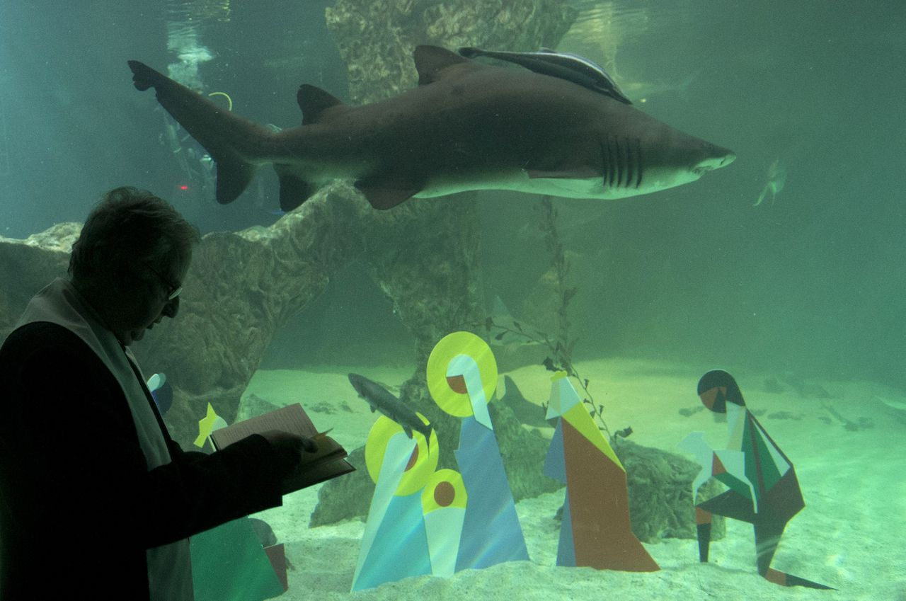 Catholic priest Father Manuel Perez blesses a Christmas Nativity scene placed in an aquarium as a shark swims by at a zoo in Madrid, Thursday, Dec. 13, 2012. (AP Photo/Paul White)