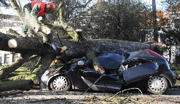 Caption: A firefighter cuts a tree after if fell on a car in Ghent, 50 km (31 miles) west of Brussels, Belgium, Thursday Jan. 5, 2012. Gale force winds caused disruption in Belgium, France, Britain and the Netherlands. (AP Photo/Yves Logghe)