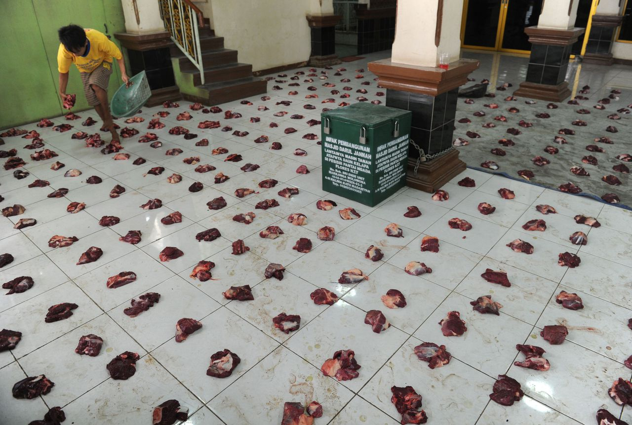 A volunteer equally divides slaughtered water buffalo and goat meat on the floor of the Jami Roudhotul Falah mosque for distribution to devotees during the celebration of Eid al-Adha, the feast of sacrifice, in Jakarta on November 6, 2011. Islam's second biggest annual festival is celebrated by Muslims worldwide to commemorate the willingness of Abraham to sacrifice his son Ismail as an act of obedience to God, before God intervened to provide him with a cow to sacrifice instead. AFP PHOTO / ROMEO GACAD